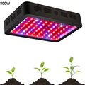 BOSSLED 800W LED Grow Light double chips Full Spectrum LED Grow Light Plants Growing and Flowering LED Grow light Panel