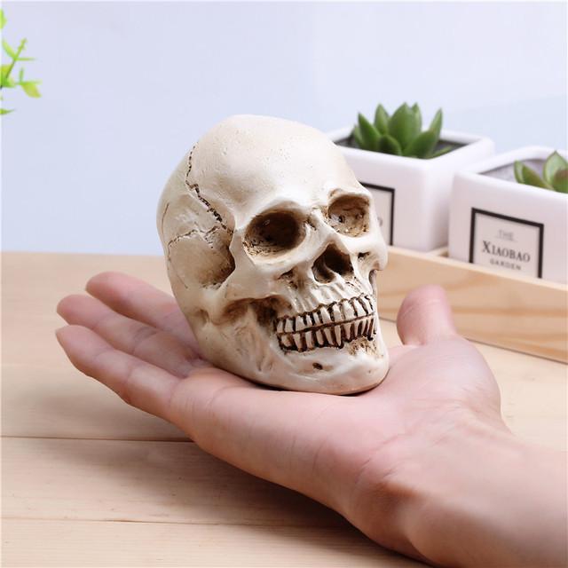 Small skull decoration props realistic human skull resin