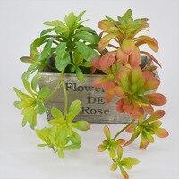 Aeonium arboreum Sztuczne Soczysty Roślin Winorośli Dekoracji Wnętrz Akcesoria DIY Ogród Kwiat Fałszywe Rośliny Zielone