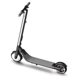 Ninebot KickScooter ES2 ES4 Smart Electric Scooter foldable lightweight long board hoverboard skateboard 25km with APP