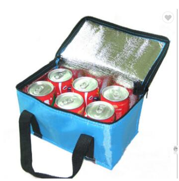 Lunch Box Insulated Cooler Bag