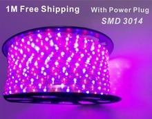 flexible LED strip light SMD 3014 RGB white LED 1M2M3M4M5M10M15M20M with Power Plug 60leds/m Waterproof led light strip 5050