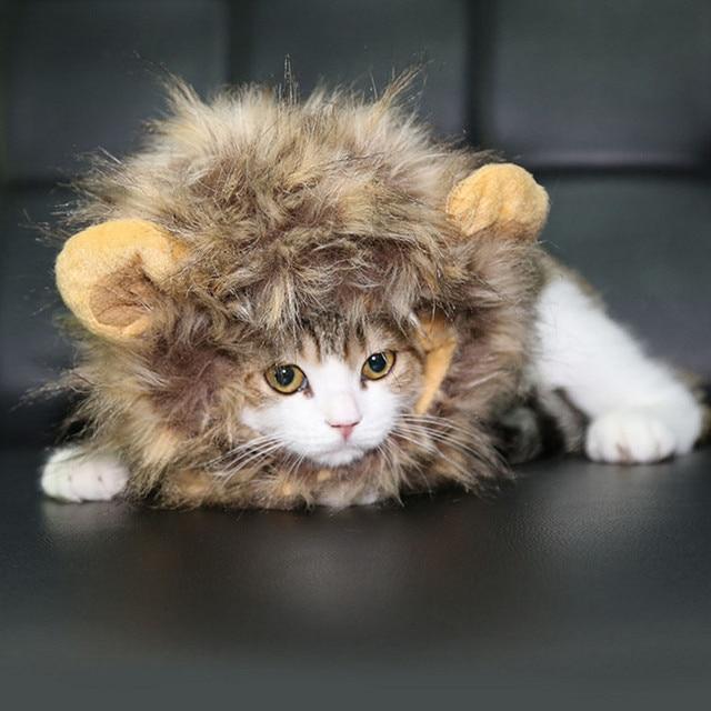 Us 887 Hund Katze Hut Warme Mütze Pet Atmungsaktives Mesh Haar Hund Haustier Katze Perücke Lustige Hut Haustier Llion Kopf Sets Gp160224 9 In