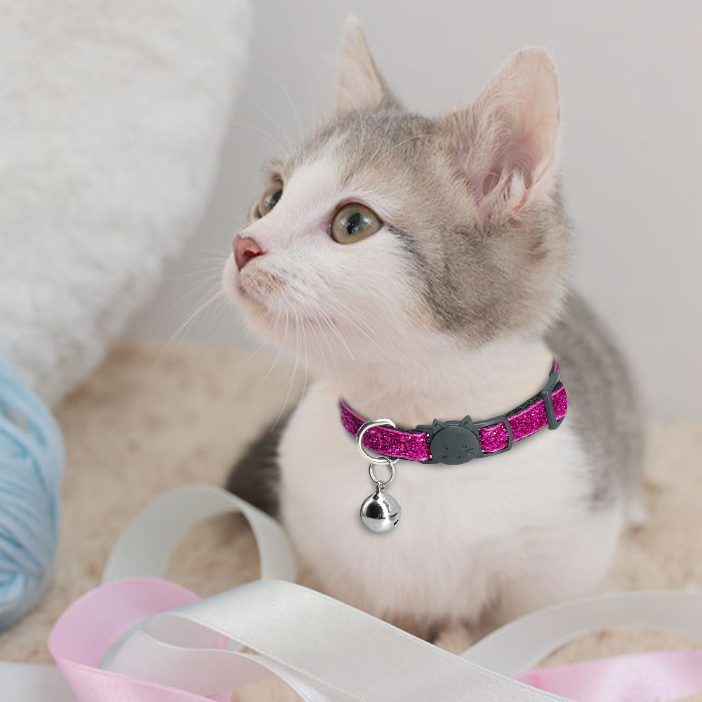 Dog Collar For Cats Solid Braid Kitten Bell Collars Shiny Adjustable Collars Cat Lead Pet Collar Cat Supplies Pet Products PQ005 (16)