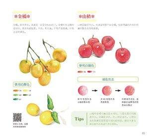 Image 4 - Usado cor chinesa lápis desenho natureza planta flor suculentas arte pintura livro