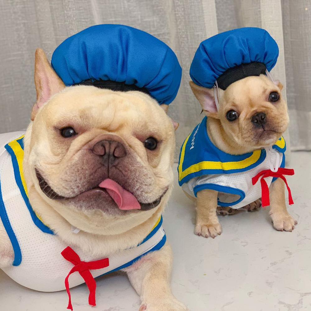 Pupreme Navy Dog Clothes Summer Like Air Mesh Dog Tshirt Dog Vest Dog Shirt French Bulldog Chihuahua Cat Shirt Pet Clothes in Dog Vests from Home Garden