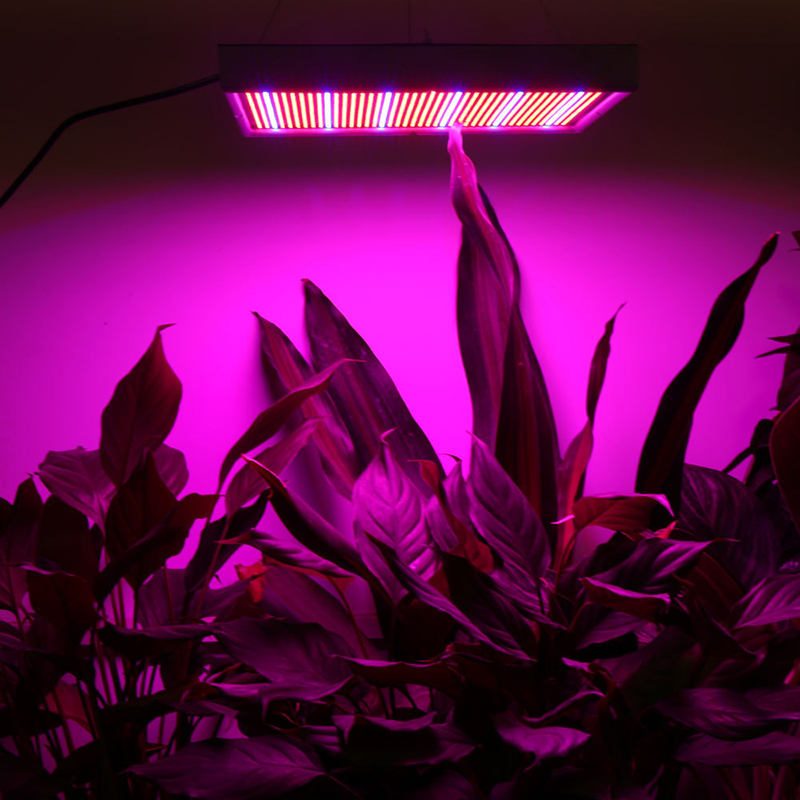 POTENCO 1365 LEDs For Plants Grow Light Greenhouse Phyto-Lamp Hydroponics Full Spectrum 2835 Growing Lamps For Plants Seedlings
