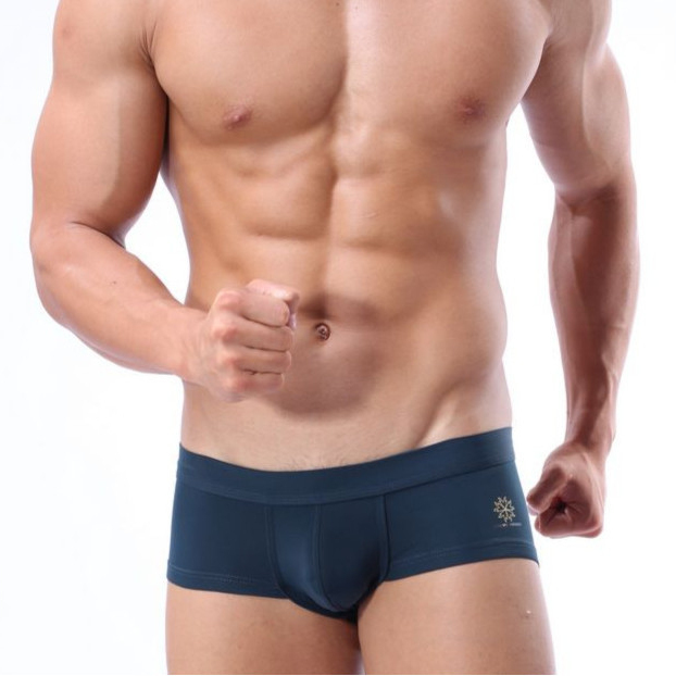 Mens Swimming Trunks Sexy Man Beach Surf Swim Wear Shorts Swimsuit Male Comfortable Boxer Underwear BRAVE PERSON Brand Quality