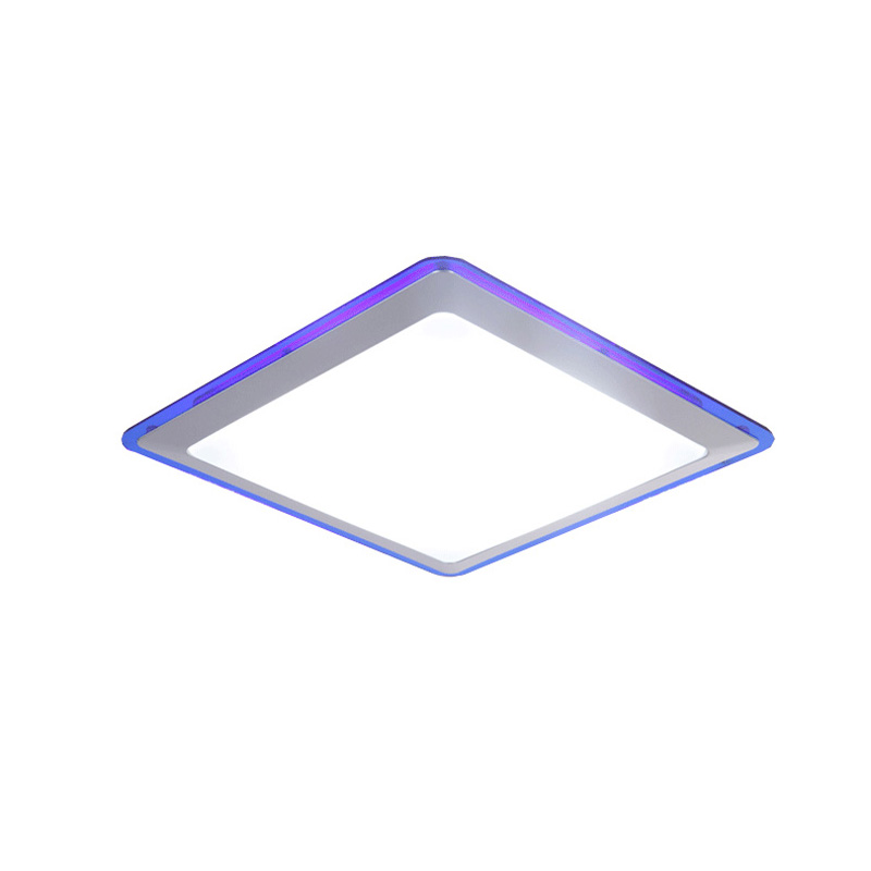 Ecolight Modern Led Ceiling Light Ceiling Lamp Led Flush Mount Acrylic Diffusor Ceiling Light for Bed Room Hallway