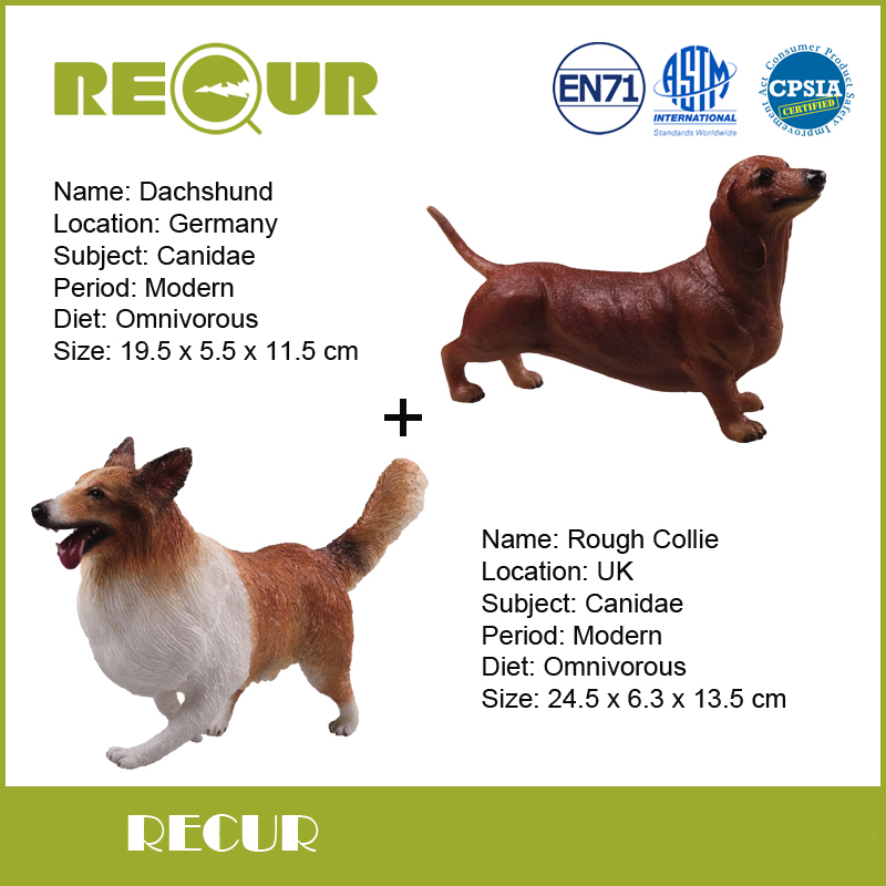 2 Pcs/lot Recur Toys Dachshund+Rough Collie High Simulation Pet Model PVC Toy Hand Painted Animal Figures Soft Toys For Children tri fidget hand spinner triangle metal finger focus toy adhd autism kids adult toys finger spinner toys gags