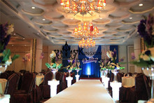 Royal Blue Color Wedding Backdrop Curtain With Silver Sequin Fabric