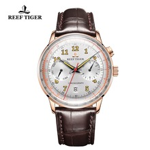 Reef Tiger/RT Luxury Brand Vintage Watch Men Rose Gold Brown Leather Strap Luminous Automatic Mechanical Watches RGA9122