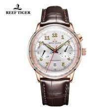 리프 타이거/rt 럭셔리 브랜드 빈티지 시계 남자 로즈 골드 브라운 가죽 스트랩 빛나는 자동 기계식 시계 rga9122