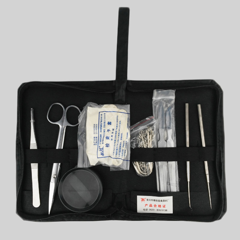 Instrumento quirúrgico Kit Animal anatómico herramienta pollo conejo ...