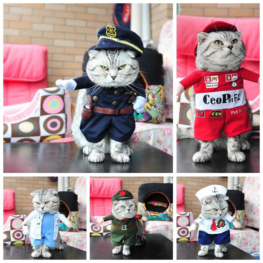 Cat Clothing For Pet Costume Cats Nurses Dress Malchivov Katten Kleding Cat Cats Costume QQM1891