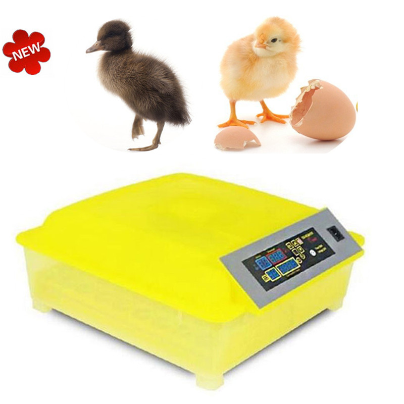 High quality Automatic 48 Eggs Incubator Poultry Hatcher Egg tester Family use  Chicken Birds Quail Incubator high quality best selling mini industrial egg incubator of 48 eggs for sale commercial hatcher incubadora de huevos automatica