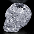 Hot! 3D Crystal Puzzle DIY Jigsaw Assembly Model Gift Toy Skull Skeleton New Sale