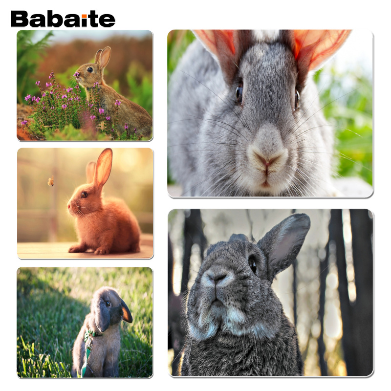 Babaite New Printed Rabbit Laptop Computer Mousepad Size for 180x220x2mm and 250x290x2mm Small Mousepad