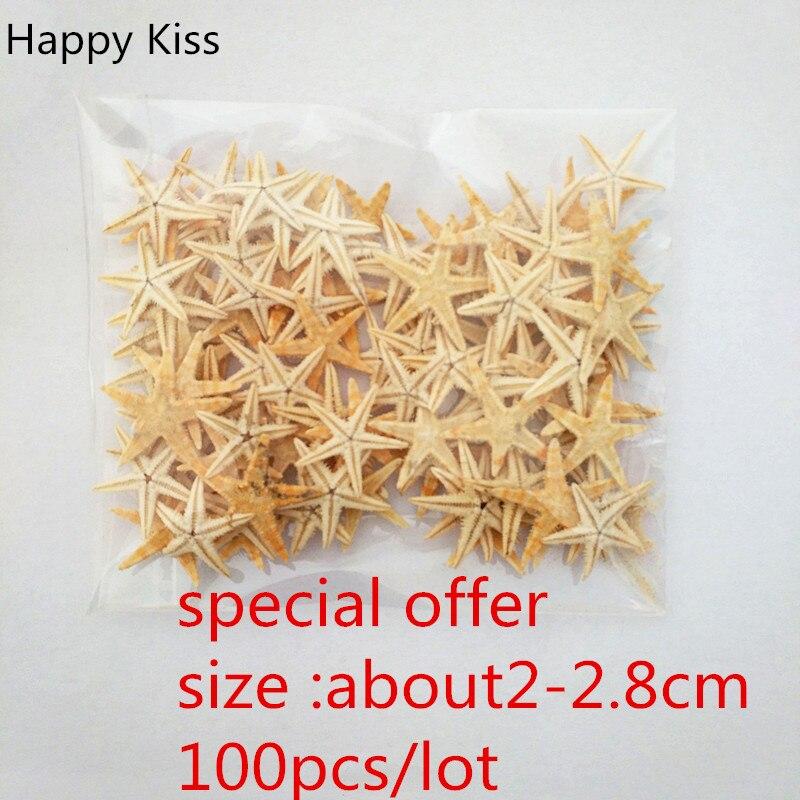 Happy Kiss 100pcs  Small Starfish Star Sea Shell Beach Craft 2-2.8cm  Natural   Starfish  Sea Star  Sea Fish Sea Shells