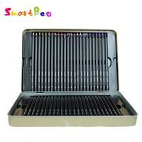 상단 유성 색 연필 예술가를위한 전문 컬러 연필 더 밝은 검은 색 나무 색 연필 주석 상자
