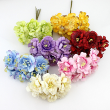 Beauty Flowers for Home Decoration