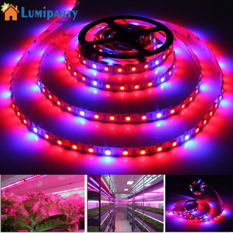 LumiParty 5M 12V LED Plant Grow Strip Light Full Spectrum Rope Light for Vegetable Culti ...