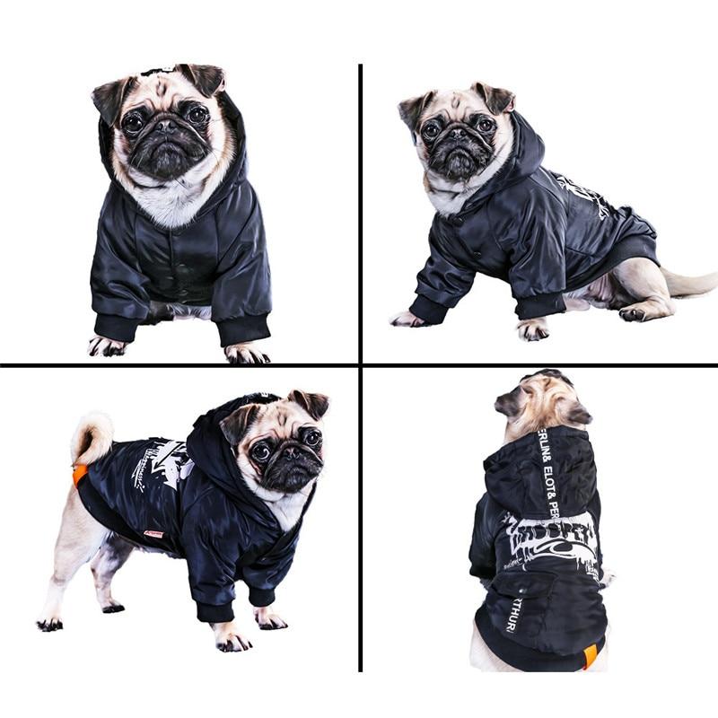 Labrador large dog clothes winter (6)