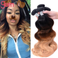 8A Ombre Body Wave Hair 3 Bundles Mink Brazilian Virgin Hair 3 Tone Body Wave Ali Beauty Wet Wavy Ombre Human Hair Extensions