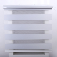 2019 New Excellent North America Design Made to Measure White Blackout Zebra Blinds