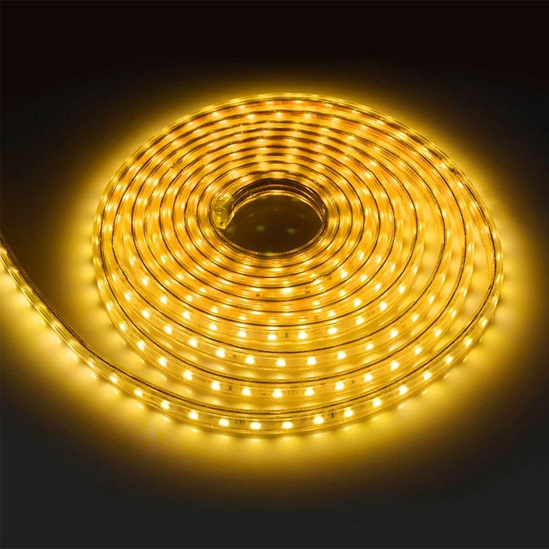 Светодиодная лента 220 В Водонепроницаемый Светодиодные ленты 5050 светодиодный 60 светодиодный S/М гибкий светодиодный Клейкие ленты для Гостиная Наружное освещение с ЕС разъем - Испускаемый цвет: Warm White