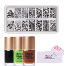 BeautyBigBang 6Pcs/Set Nail Stamping Starter Leaf  Pattern Plates with Clear Jelly Stamper Polishes