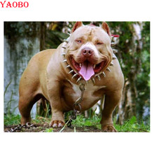 American Bully Promotion Shop For Promotional American Bully On