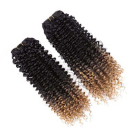 DELICE 2pcs Pack Ombre Curly Hair Extension Weft Sew In Synthetic Braid Hair Weaving 14inch For