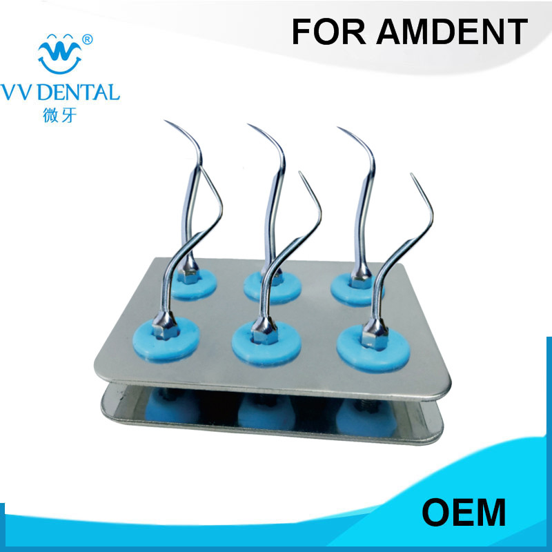 1 PCS ASKS DENTAL AMDENT Scaler Standard Kit Sliver FOR TOOTH SCALLING AND TOOTH TREATMENT WITH #37 AND #39 AMDENT TIPS цена