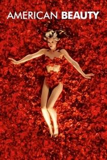 20A406 Keira Knightley American Beauty Girl Movie Art Poster Silk Deco