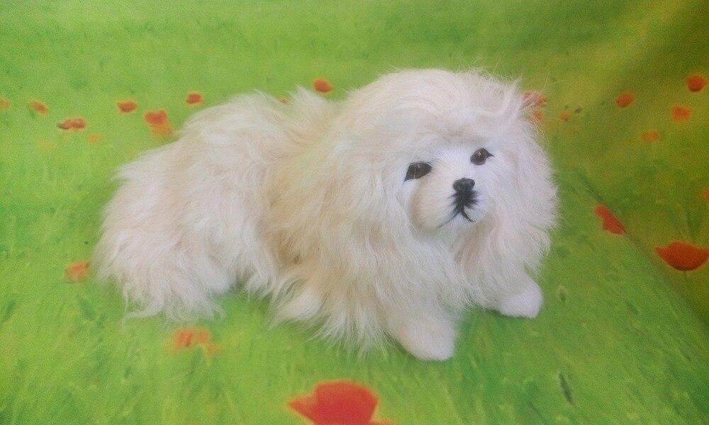 simulation white poodle large 29x25cm model toy lifelike lying poodle toy dog handicraft ,decoration gift t405 цена