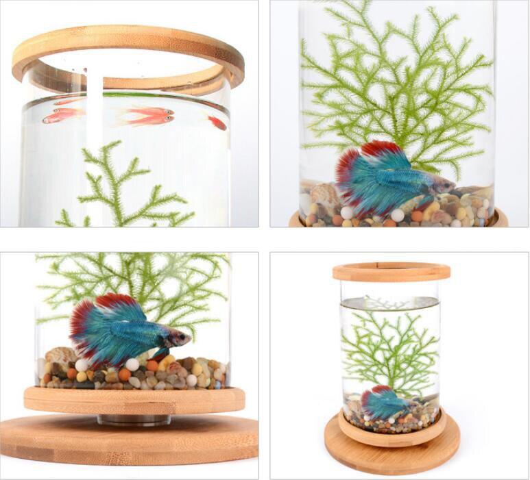 do tanque de peixes mini acessórios decoração