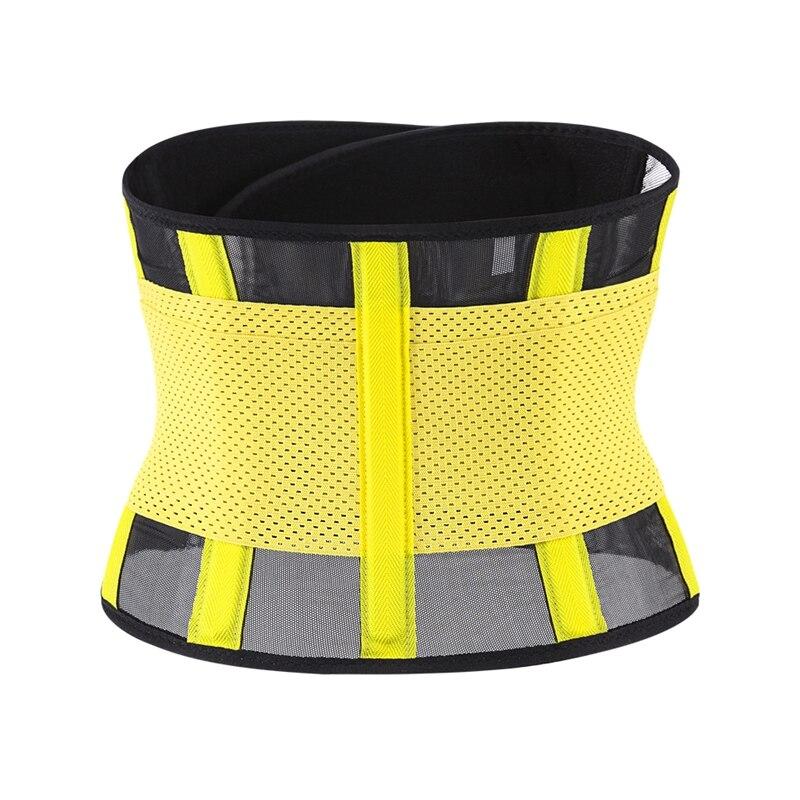 waist belt (22)