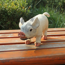 Home Decoration Animals The Little White Pig Toy