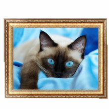 DIY 5D Diamond Switch Kit Embroidery Blue Eyes Cat Painting Mosaic Needlework Cross Stitch Home Decor 40*30cm #K400Y#
