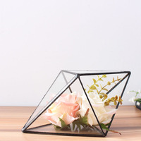 New Creative Glass Greenhouse Micro Landscape Ornaments Home Furnishing Jewelry Soft Outfit Flower Pot Plant Free