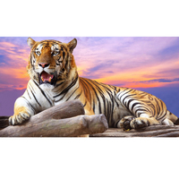 3D DIY Siberia Tiger 5D Diamond Painting Square Diamond Embroidery Dmc Cross Stitch New Year Home