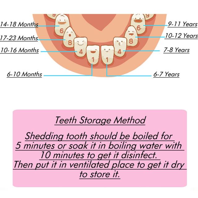Children's Wooden Box for Storage of Teeth
