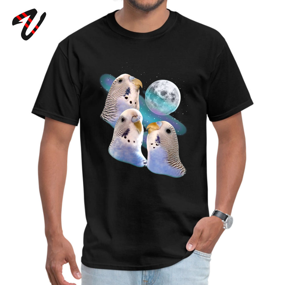 Casual Funny Tees Short Sleeve for Men Pure Cotton Summer/Fall Crew Neck T-Shirt Leisure Tee Shirt Coupons Top Quality Sorry About Our President Anti Trump Protest M black
