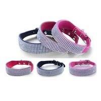 Exquisite 8 Rows Net Drill Pet Collar Alloy Buckle Dog Belt Cat Dog Collar Pet Supplies