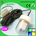 IP68 Waterproof New Product 60w High Brightness LED Fishing Attracting Baits LED Underwater Fishing Light White Green Lure Light