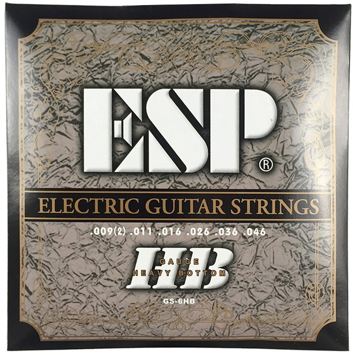 ESP GS-6HB Electric Guitar Strings Heavy Bottom .009 - .046