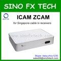 Suscripción clave para Singapore Cable tv box cuadro negro C600 C601 C608 C808 c801 hd 700HDC HDC900SE 800SE C1 QBOX 4000 hdc 5000 hdc