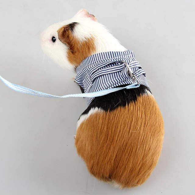 Sqinans 2 Colors Hamster Rabbit Harness And Leash Set Ferret Guinea Pig  Small Animal Pet Walking Lead 1 8m S/L