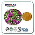 geranium extract dmaa/geranium extract/geranium extract powder 100g/ lot